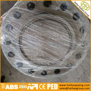 Manufacture High quality Forging flanges, ANSI B16.5 CL150 300 600 Blind flanges, BLFF, BLRF Flanges