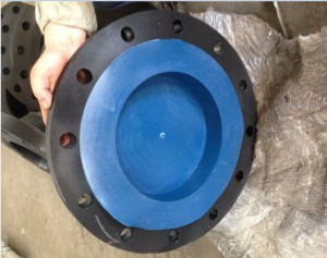 ANSI B16.5 SW RF FF FLANGES, CL300 CL600 FORGED FLANGES