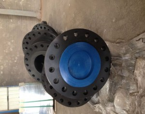 WELD NECK FLANGES ANSI, FORGED FLANGES CL300 600, CARBON STEEL FLANGE
